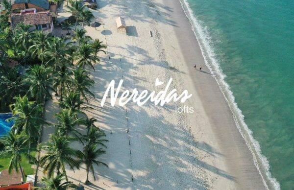 Nereidas Lofts Construction Advances October, 2019